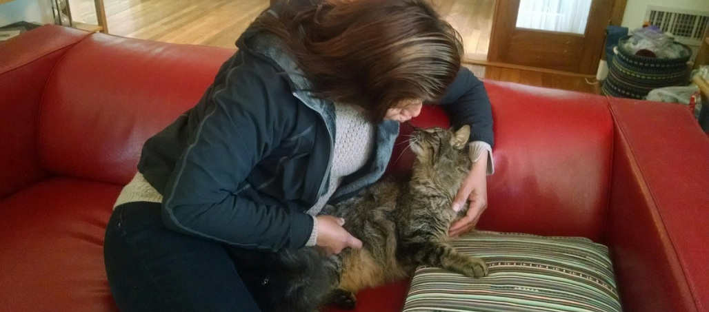 teresa-cat-sofa
